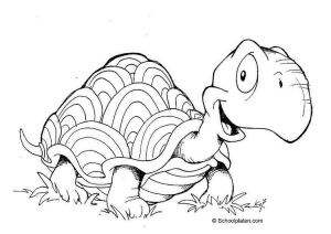 Slow and Steady Wins the Race – Even in Business