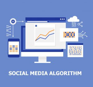 social media algorithms